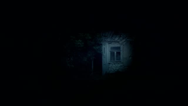 Little abandoned fairy house hut at night Little tiny abandoned fairy house at night barns stock videos & royalty-free footage