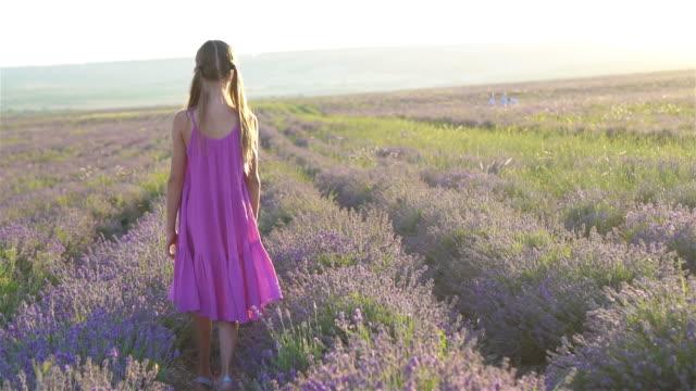 little adorable girl in lavender flowers field at sunset in purple dress - wschodnio europejski filmów i materiałów b-roll