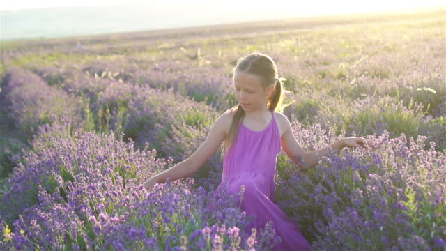 little adorable girl in lavender flowers field in purple dress - wschodnio europejski filmów i materiałów b-roll