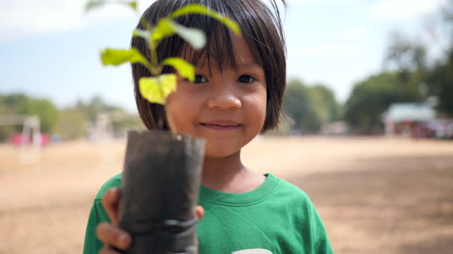 Little asian girl holding young plant in hands against spring green background. Save The World and Ecology concept. earth day stock videos & royalty-free footage