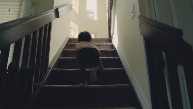 작은 아기 (24 개월) 단계를 등반 하는 소년 - 동기 부여 스톡 비디오 및 b-롤 화면