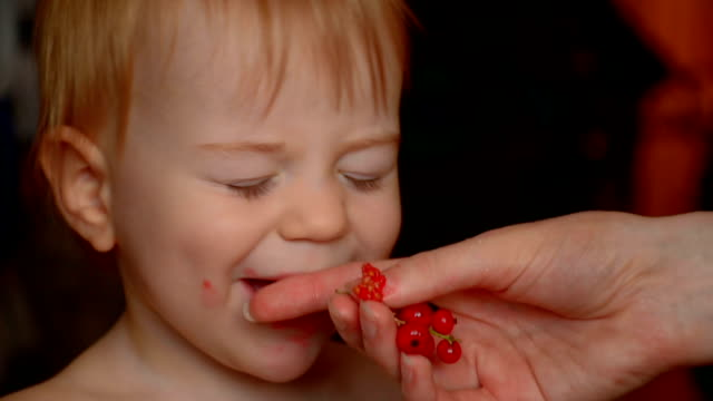 Little baby eating redcurrant, close-up video