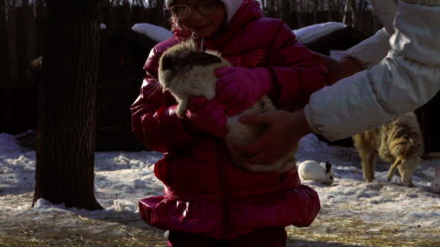 Little baby girl holds a rabbit. Girl talks to rabbit. Sheep came to see the rabbit. A Sunny spring day video