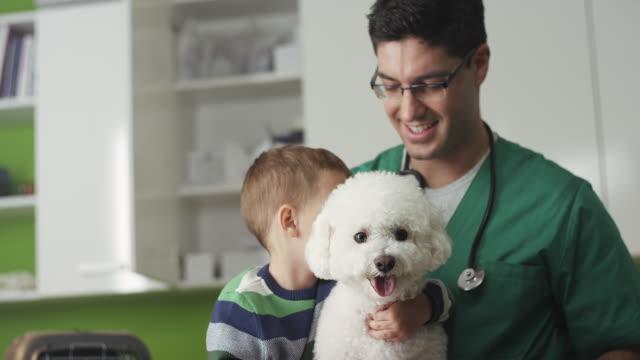 vídeos y material grabado en eventos de stock de niño y su perro en el veterinario - veterinario