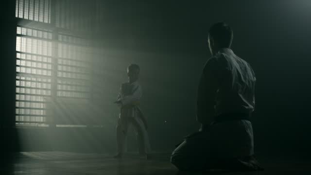 vídeos de stock, filmes e b-roll de garotinho e seu professor de karatê praticando juntos - artes marciais