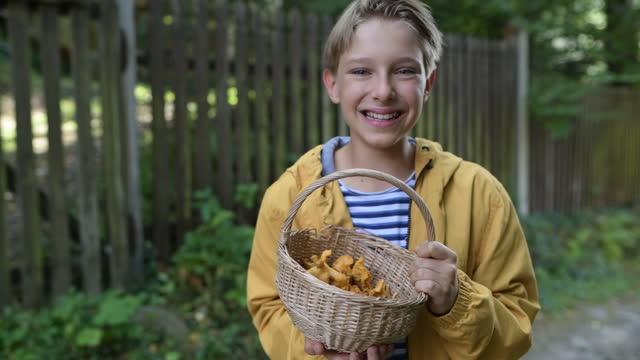 Little boy holding a basket of freshly picked chanterelles