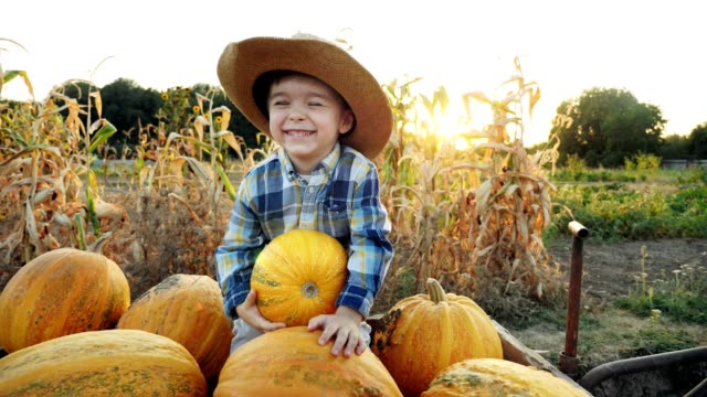 A little boy is riding in a cart with pumpkins