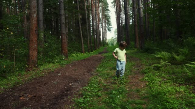 little boy jumps in the woods - solo bambini maschi video stock e b–roll