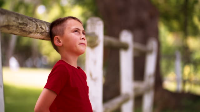 Little boy leaning against a fence daydreaming in summer park video