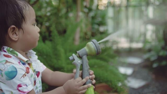 Un petit garçon, pulvérisation d'eau sur la plante à la maison. - Vidéo