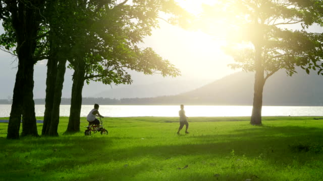little boy two old 7 years happy with riding on bicycle and running on meadow at sunset on nature background, tree, river and mountain. video 4k slow motion - природный парк стоковые видео и кадры b-roll