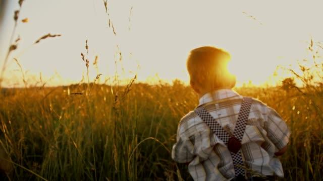 SLO MO Little boy walking in a meadow video