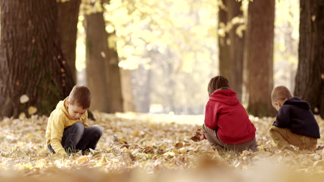 Little boys having fun with autumn leaves video