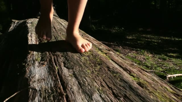 Little Child Bare Feet Walking on Tree Log In Forest Slow Motion