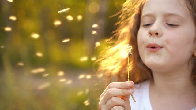 Little curly girl with blowing dandelion. Little curly girl blowing dandelion. Slow motion. dandelion stock videos & royalty-free footage