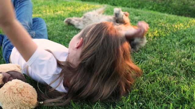 little cute girl lying on green grass, lawn. sunset. summer. a happy child plays with his little dog.