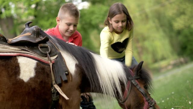 Little girl and boy play with pony horse