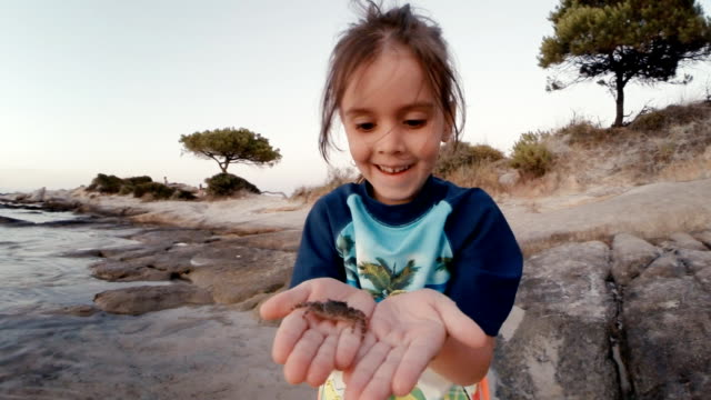 little girl and crab at the beach. learning process. - granchio video stock e b–roll