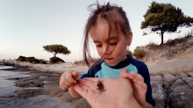 little girl and crab at the beach. supportive father, learning process. - curiosità video stock e b–roll