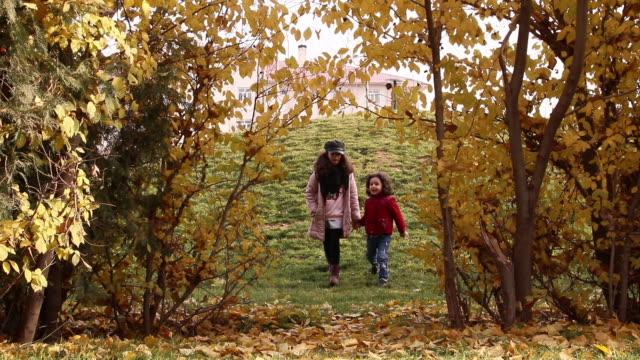 маленькая девочка и ее брат ходить по золотисто-желтым листьям осенью. - ноябрь стоковые видео и кадры b-roll