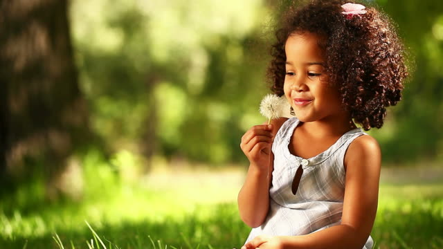 Little Girl Blowing Dandelion Seeds In the Park video
