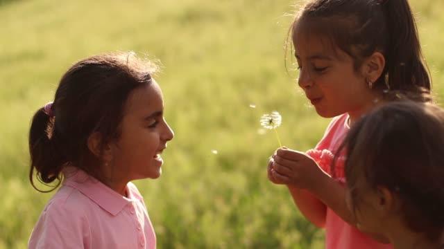 liten flicka blåser mask ros frön - förskoleelev bildbanksvideor och videomaterial från bakom kulisserna