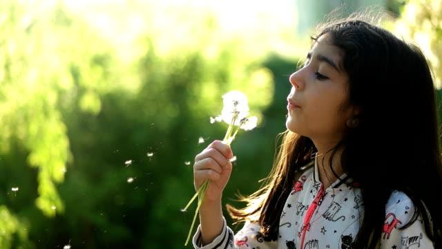 Little girl blowing dandelion video