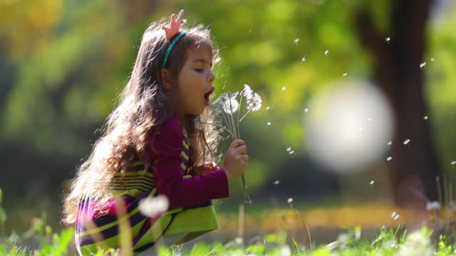 Little girl blowing dandelions, flowers in autumn park. Wishes, dreams, playtime.
