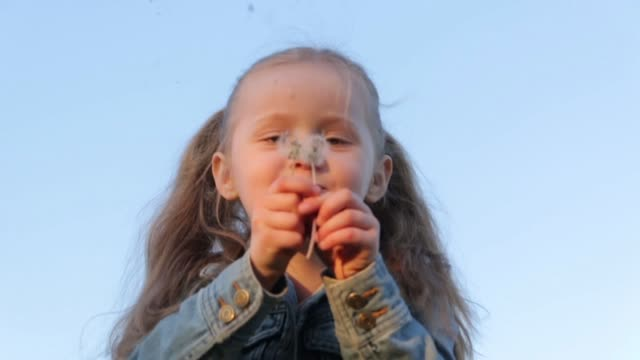 タンポポを吹く少女 - ふわふわ点の映像素材/bロール
