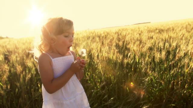 Little girl blows dandelion video