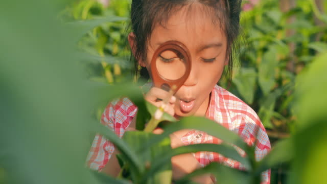 Little girl child exploring nature in a garden with a magnifying glass looking for insects.Eduction,Children,People,Springtime,Technology,Science,Summer,Fun concept.