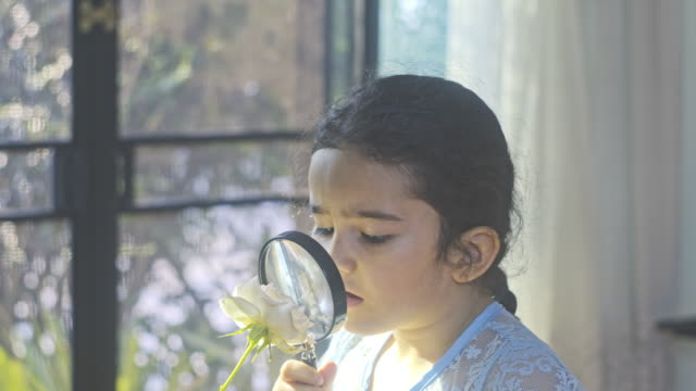 Little girl child exploring with a magnifying glass looking for insects in flower.Eduction