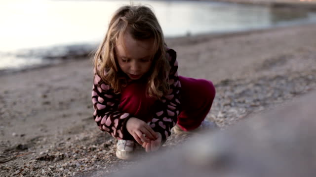 vidéos et rushes de petite fille en ramassant des coquillages sur la plage - coquillage