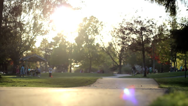 Little Girl Crashes Bike At The Park video