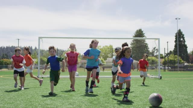 little girl dribbling soccer ball up a field - sport video stock e b–roll
