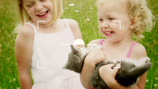маленькая девочка выходит ее картины, - кошка смешанной породы стоковые видео и кадры b-roll