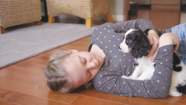 Little girl hugging, and petting her adorable puppy on a wooden floor video