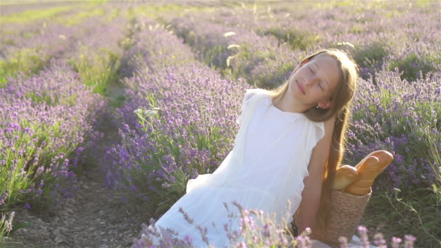 little girl in lavender flowers field at sunset - wschodnio europejski filmów i materiałów b-roll