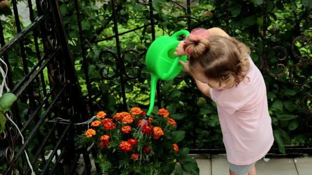 küçük bir kız çiçekleri suluyordum. - bahçe ekipmanları stok videoları ve detay görüntü çekimi