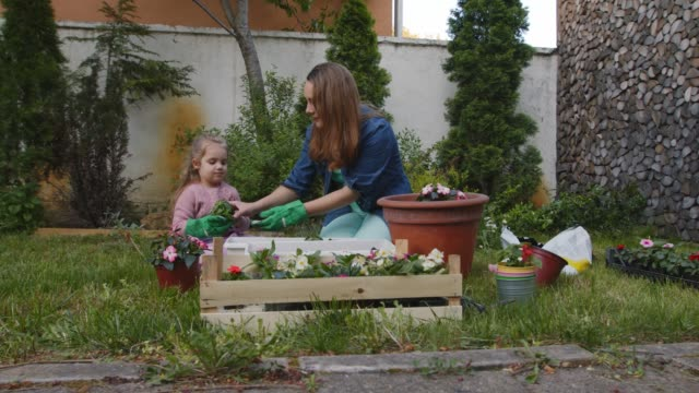 little girl learning how to garden while assisting her mother in potting flowers - gardino video stock e b–roll
