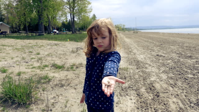 Little Girl on a Sandy Beach Holding Out Pebbles in Her Palm video
