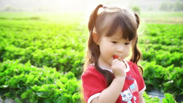 Little girl picks and eats strawberry video