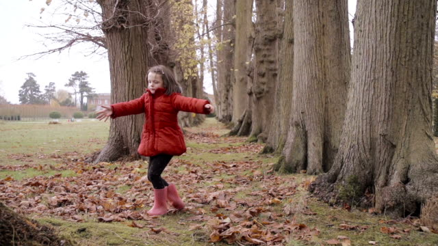 Little Girl Playing In The Autumn Fall video