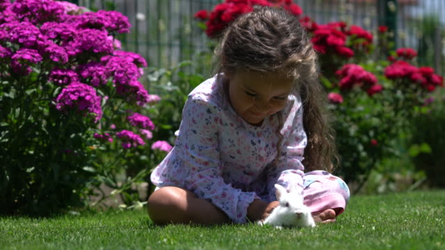 Little girl playing with bunny rabbit on hand video