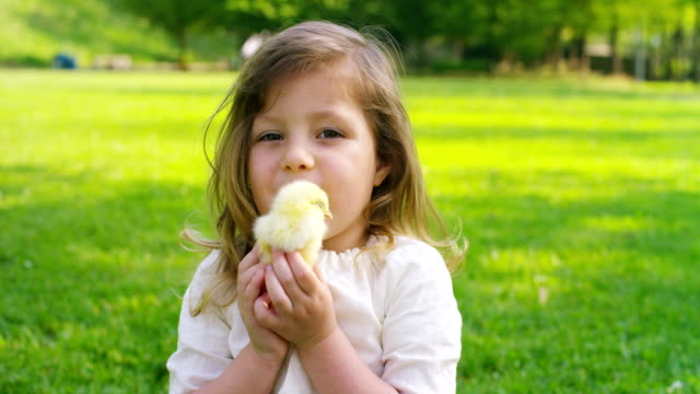 Little Girl Playing with Chick video