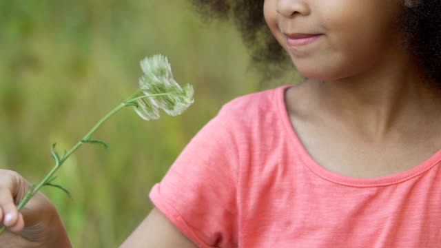 Little girl playing with flower green field, spending free time outside, nature video