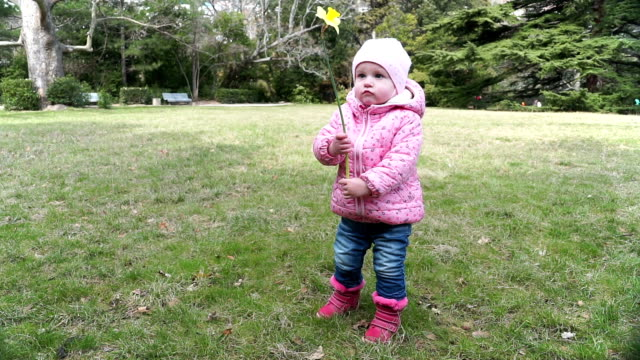 Little girl playing with flower video