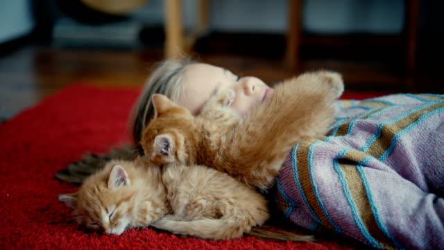 小さな女の子が屋内で子猫と遊んで ビデオ