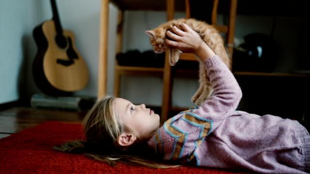 little girl playing with kittens indoors - kociak filmów i materiałów b-roll