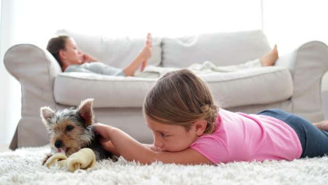 bambina giocando con il cucciolo masticare osso - moquette video stock e b–roll